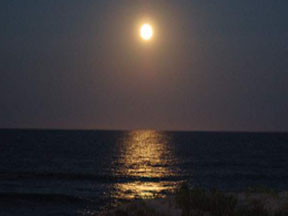 Moonlight on the beach - photo by Sherman